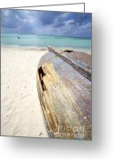 Ship-wreck Greeting Cards - Caribbean Shipwreck Greeting Card by David Letts