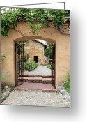 Passageways Greeting Cards - Carmel Mission Path Greeting Card by Carol Groenen