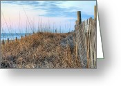 Sand Fences Photo Greeting Cards - Carolina Pastels Greeting Card by JC Findley