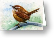 Carolina Painting Greeting Cards - Carolina Wren Large Greeting Card by John D Benson