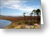 Rural Art Greeting Cards - Carrabelle Salt Marshes Greeting Card by Rich Leighton
