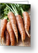 Orange Greeting Cards - Carrots Greeting Card by Elena Elisseeva