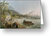 Bay Islands Painting Greeting Cards - Carting and Putting Sugar Hogsheads on Board Greeting Card by William Clark