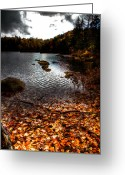 Folage Greeting Cards - Cary Lake After the Storm Greeting Card by David Patterson