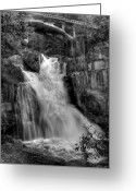 Yosemite Creek Greeting Cards - Cascade Creek Greeting Card by Bill Gallagher