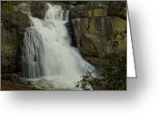 Yosemite Creek Greeting Cards - Cascade Creek Under the Bridge Greeting Card by Bill Gallagher