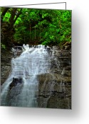 Buttermilk Greeting Cards - Cascading Falls Greeting Card by Robert Harmon