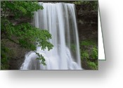U.s. National Forest Greeting Cards - Cascading Waterfall In Jefferson Greeting Card by Tim Fitzharris