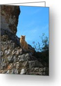 12th Century Greeting Cards - Castle Cat Greeting Card by Louise Heusinkveld