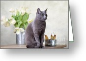 Kitten Greeting Card Greeting Cards - Cat and Tulips Greeting Card by Nailia Schwarz