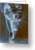 Paws Digital Art Greeting Cards - Cat Walking Greeting Card by Ben and Raisa Gertsberg