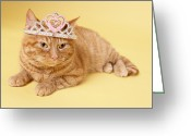 Tiara Greeting Cards - Cat Wearing Tiara Greeting Card by BananaStock