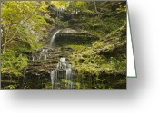 Gully Greeting Cards - Cathedral Falls 3235 Greeting Card by Michael Peychich
