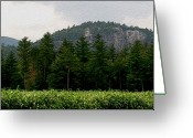 Nh Greeting Cards - Cathedral Ledge North Conway NH Greeting Card by Paul Gaj