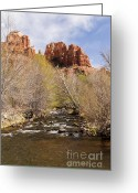 Butte Creek Greeting Cards - Cathedral Rock with Spring Buds Greeting Card by Darcy Michaelchuk