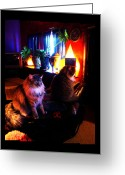Shaman Drum Greeting Cards - Cats On A Drum Greeting Card by Susanne Still