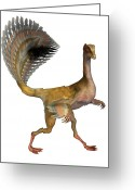 Tail Feather Greeting Cards - Caudipteryx Dinosaur Greeting Card by Friedrich Saurer