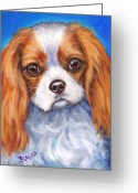 Spaniels Greeting Cards - Cavalier King Charles Spaniel Blenheim on Blue Greeting Card by Dottie Dracos