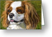 Spaniels Greeting Cards - Cavalier King Charles Spaniel Blenheim on Green Greeting Card by Dottie Dracos