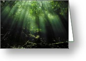 Pacific Art Greeting Cards - Cave Diving in Mexico Greeting Card by Christine Till