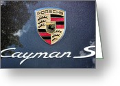 Cayman Greeting Cards - Cayman S Greeting Card by Kristin Elmquist