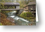 Battleground Greeting Cards - Cedar Creek Greeting Card by Idaho Scenic Images Linda Lantzy