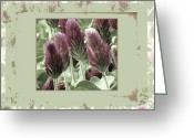 Mixed Media Photo Greeting Cards - Celebration Greeting Card by Bonnie Bruno