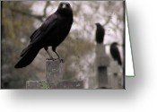 Passerines Greeting Cards - Cemetery Crows Greeting Card by Gothicolors With Crows