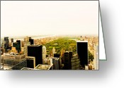 Nyc Cityscape Greeting Cards - Central Park and the New York City Skyline From Above Greeting Card by Vivienne Gucwa