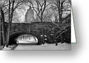 Crazy Greeting Cards - Central Park and the San Remo Building Greeting Card by John Farnan