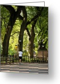 Jogging Greeting Cards - Central Park Jogging Greeting Card by Brian Jannsen