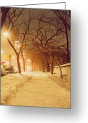 Slush Greeting Cards - Central Park Nocturnal Snow II Greeting Card by Max Ferguson