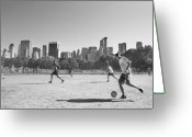 Park Greeting Cards - Central Park Greeting Card by Robert Lacy