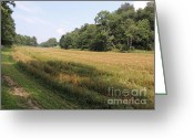 Amish Farms Greeting Cards - Central Pennsylvania Farm Field  Greeting Card by JB Ronan