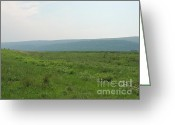 Amish Farms Greeting Cards - Central Pennsylvania Flowering Mountain Meadow Greeting Card by JB Ronan