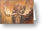 Antlers Greeting Cards - Challenge Greeting Card by Crista Forest