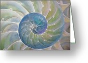 Babys Greeting Cards - Chambered Nautilus Greeting Card by Ev Cabrera Marinucci
