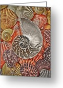 Shells Greeting Cards - Chambered Nautilus Shell Abstract Greeting Card by Garry Gay