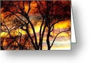 Orange Prints Greeting Cards - Changing Skies Greeting Card by James Bo Insogna