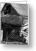 Wooden Barns Greeting Cards - Character Years Greeting Card by East Coast Barrier Islands Betsy A Cutler