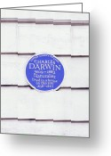 Commemorative Greeting Cards - Charles Darwin Commemorative Plaque Greeting Card by Martin Bond