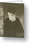 Theory Of Evolution Greeting Cards - Charles Darwin, English Naturalist, 1881 Greeting Card by Science Source