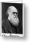 Theory Of Evolution Greeting Cards - Charles Robert Darwin, English Greeting Card by Photo Researchers, Inc.