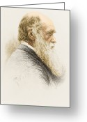 Selection Greeting Cards - Charles Robert Darwin, English Greeting Card by Science Source