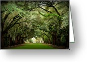 Carolina Greeting Cards - Charles Towne Landing 0198 Greeting Card by Melissa Wyatt