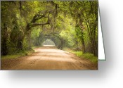 Lush Vegetation Greeting Cards - Charleston SC Edisto Island Dirt Road - The Deep South Greeting Card by Dave Allen