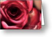 Flower Cards Greeting Cards - Charming Red Rose Greeting Card by Jayne Logan