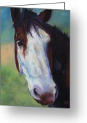 Western Pastels Greeting Cards - Charolette Greeting Card by Frances Marino