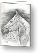 Charro Greeting Cards - Charros horse Greeting Card by Jana Goode
