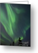 Dawson City Greeting Cards - chasing lights II natural Greeting Card by Priska Wettstein